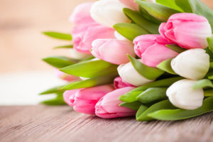 36449893 - bouquet of tulips in front of spring scene